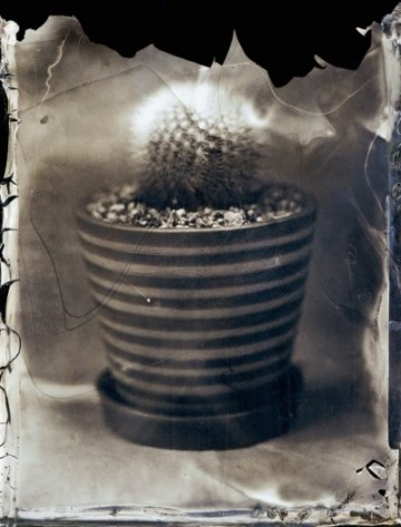 Inframince앵프라맹스_-Inkjet-Print from-4x5 inch_ Collodion-Wet-Plate-Negative_ 92x69.8cm.2014