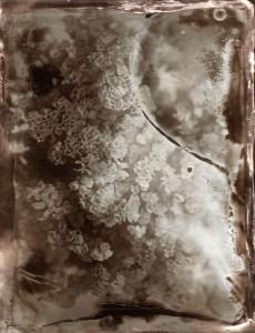 Scenery in between Inkjet Print on Hanji Paper, 100(h)x77(w)cm, 2017