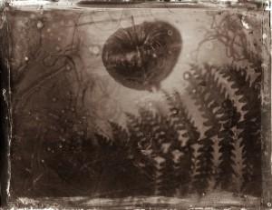 Scenery in between Inkjet Print on Hanji Paper, 77(h)x100(w)cm, 2017